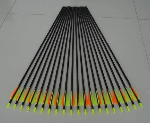 12-PK 30″ Golden Power Fiberglass Practice/hunting Arrows W/changeable  Point for Compound Bow